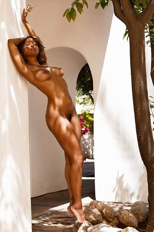 Nude Stacey Dash Naked